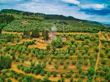 Rustico/Casale/Corte di 350 m2 a Greve in Chianti