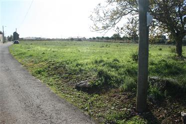 Grundstück: 3.000 m²