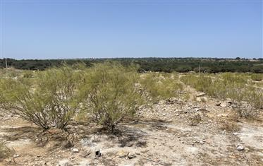 Titled and constructible land, 4,000 m2, Villa Zone in Essaouira