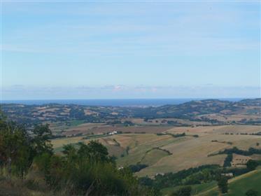 Podere con vista mare a Monteciccardo