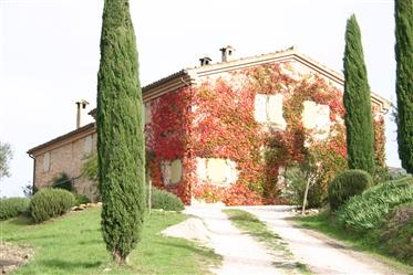 Restored country house with a beautiful panoramic view, surrounded by fields and vineyards. Several
