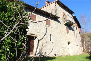 Casolare in pietra su tre livelli a Borgo Pace