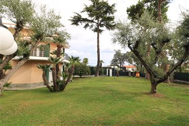 Luxury property: 220 m²