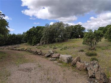 Zemljište : 3.000 m²
