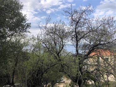 Detached house 48 sq m, Leivatho