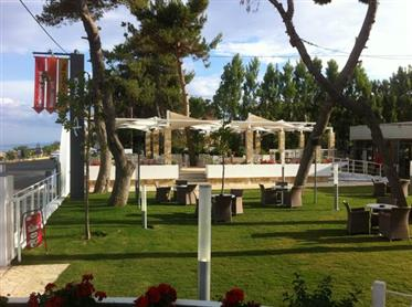 Store suitable for business activity with pool 5,015 sq m, Eleios-Pronnoi