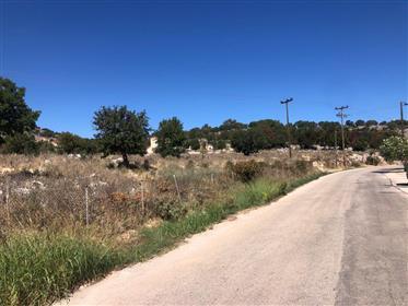 Οικιστικό Οικόπεδο 8.166 τ.μ., Ελειός-Προνοίοι