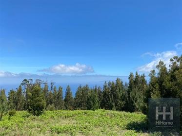 Terreno com 4680m2 em Santa Cruz