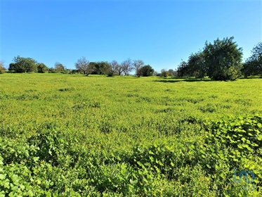 69 bedrooms Building land for Sale