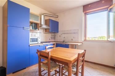 Apartment: 50 m²