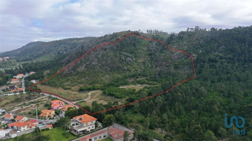 Large land with a total area of ??164,000 m2, comprising a flat part and another going up