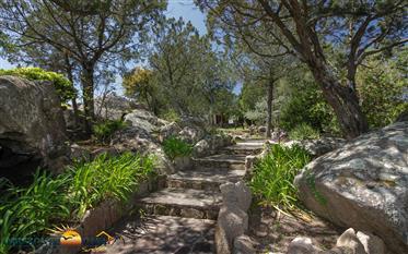 Sardegna San Teodoro – Villa vista mare a Punta Molara