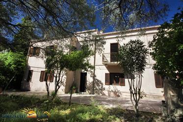 Sardegna Brunella – Casa indipendente con giardino a 5 minuti da Budoni.