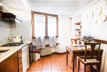 Bel appartement près de la Piazza Pitti