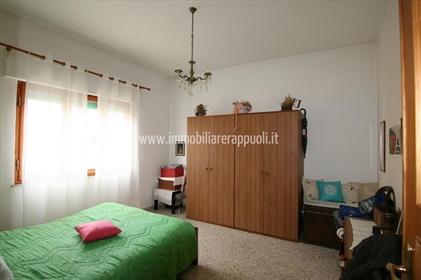 Nuevo: 330 m²