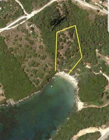 Terreno: 3.250 m²