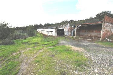 Terreno: 17880 m²