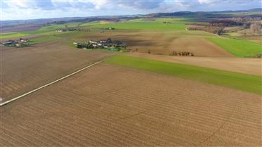Arable farm 160 ha