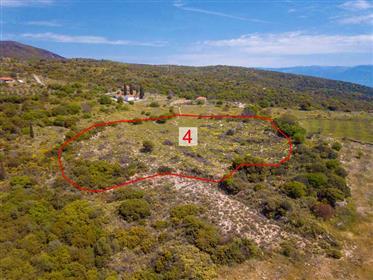 Plot 8165 sq.m. In Agnanti, Chranon-Petalidi area, Messinia