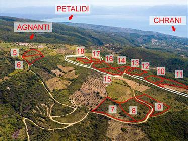 Unique Opportunities Sale 14 plots, Agnanti Above Petalidi, Messinia for Investment Or Residential U