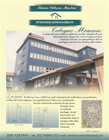 Prédio: 4.000 m²