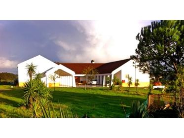 House: 450 m²