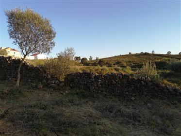 Terreno de 800 m2 para construção  - Pau Gordo  -