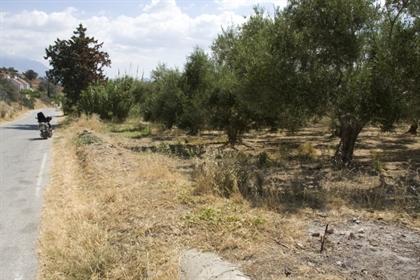 (Προς Πώληση) Αξιοποιήσιμη Γη Οικόπεδο εντός οικισμού    Ν. Ηρακλείου/Τυμπάκι - 1.200 τ.μ, 40.000€