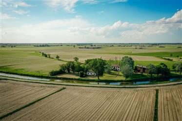 Adria, Bauernhof Polesinin
