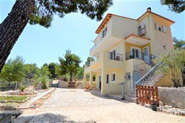 Mikro Amoni, Solygeia Einfamilienhaus 165 m2