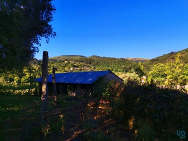 Excellent Investment For Local Accommodation, In Ponte De LIMA Small farm with about 1736