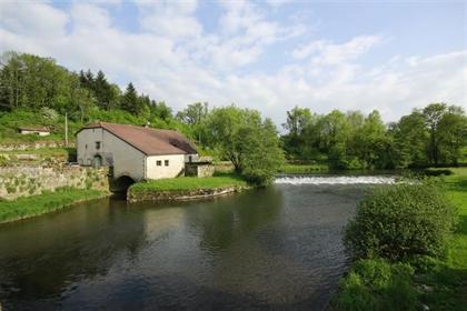 Een prachtige watermolen aan de Saône M9767-14842