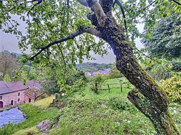 Gezellig huis met tuin interrassen M9876-39747
