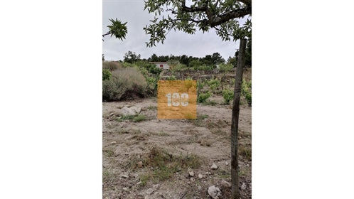 Terreno em Larinho