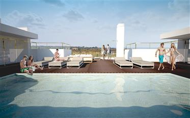 2 Bedroom Penthouse Apartment w/ Swimming Pool at the Top