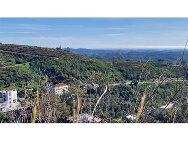 Terreno para Hotel nas Caldas de Monchique, Monchique, Algarve