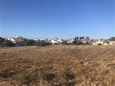 Terreno de 22.000 m2, localizado na Quinta da Carlota