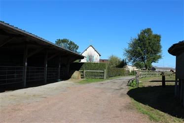 Rare at the market, a professional equestrian property with 2 three-bedroom houses and 2 studios