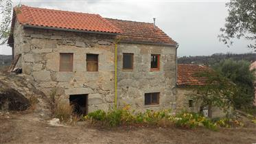 Village house with orchard