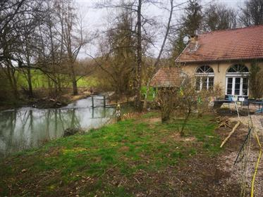 Mill renovated. With 8 ha, natural dream site