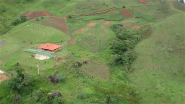 Vendo Fazenda Orgânica com Indústria de Bebida
