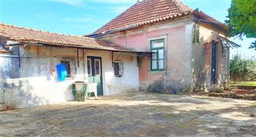 Casa Loureiro-Oliveira Azeméis- Portugal