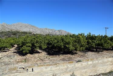 Terreno de 40'000m2 con vistas al mar y Denia en Sanet y Negrals