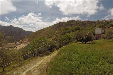 Terreno de 6100m2 con vistas a la Sierra Nevada