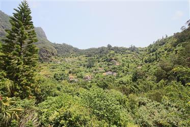 3-Zimmer-Wohnung in Sao Roque do Faial