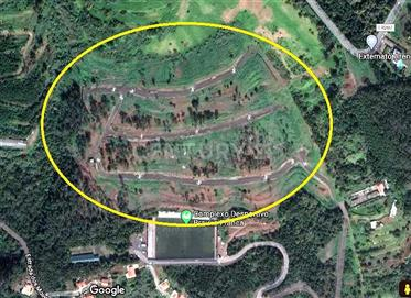 Lotes de Terreno para Construção nas Eiras, Santa Cruz, Made...