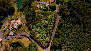 Maravilhoso Terreno com Levada e frente a Estrada em Gaula, Achada do Marques, Madeira, Portugal