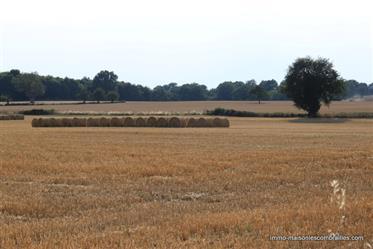 Dans l'Indre, région Centre, près de Vicq-Exemplet, une fermette magnifiquement restaurée avec une p