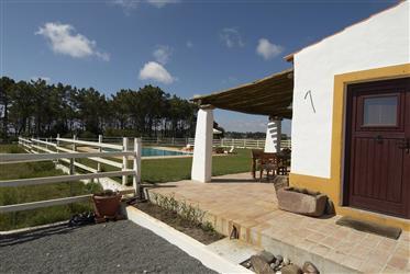 Quinta com alojamento local e picadeiro, piscina e vista mar