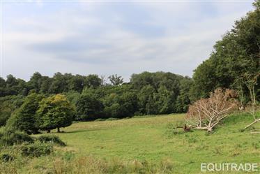 Wonderfull farm 23 ha